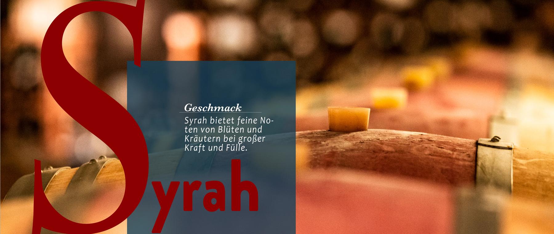 Syrah ist eine Sorte, die oft und gut im Barrique reift