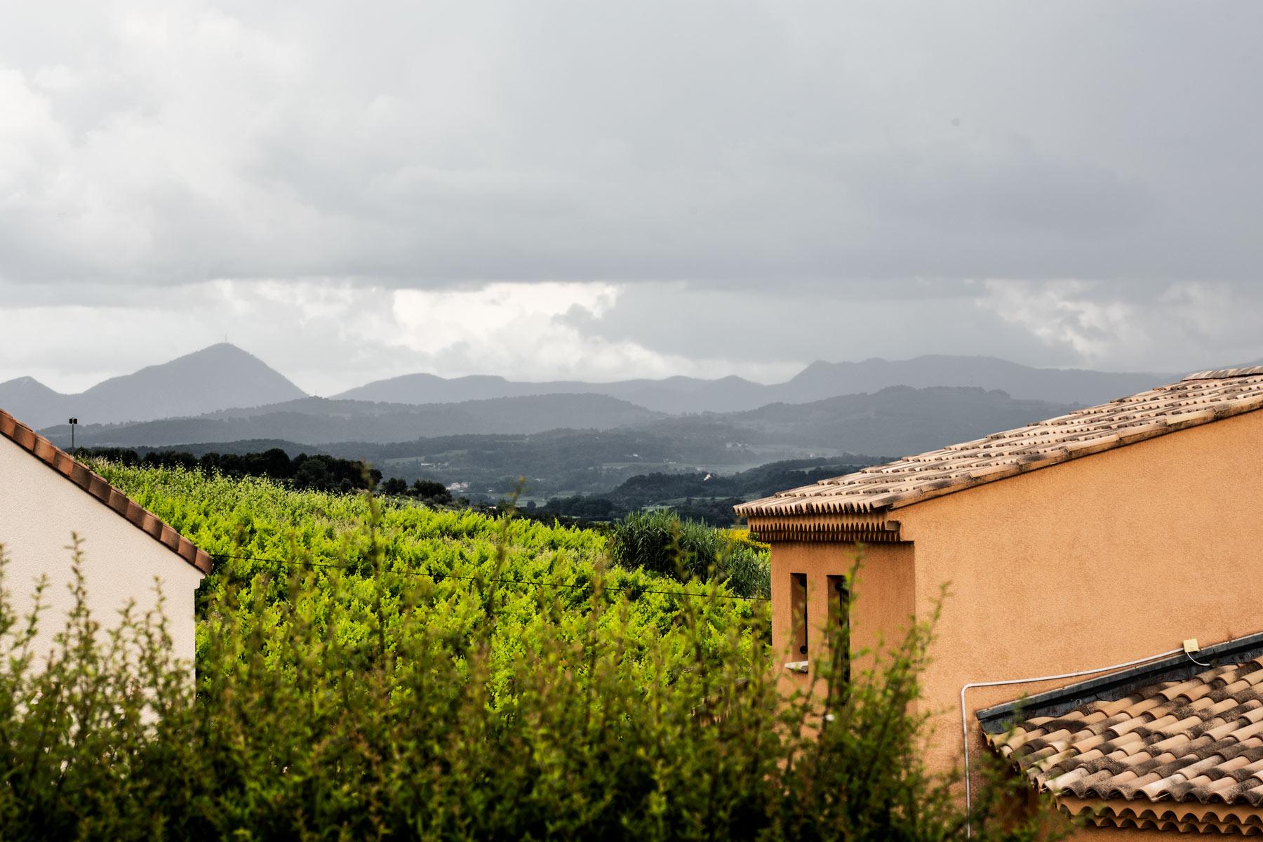 Syrah an der sdlichen Rhône in einem Sommergewitter über Rasteau in der Provence