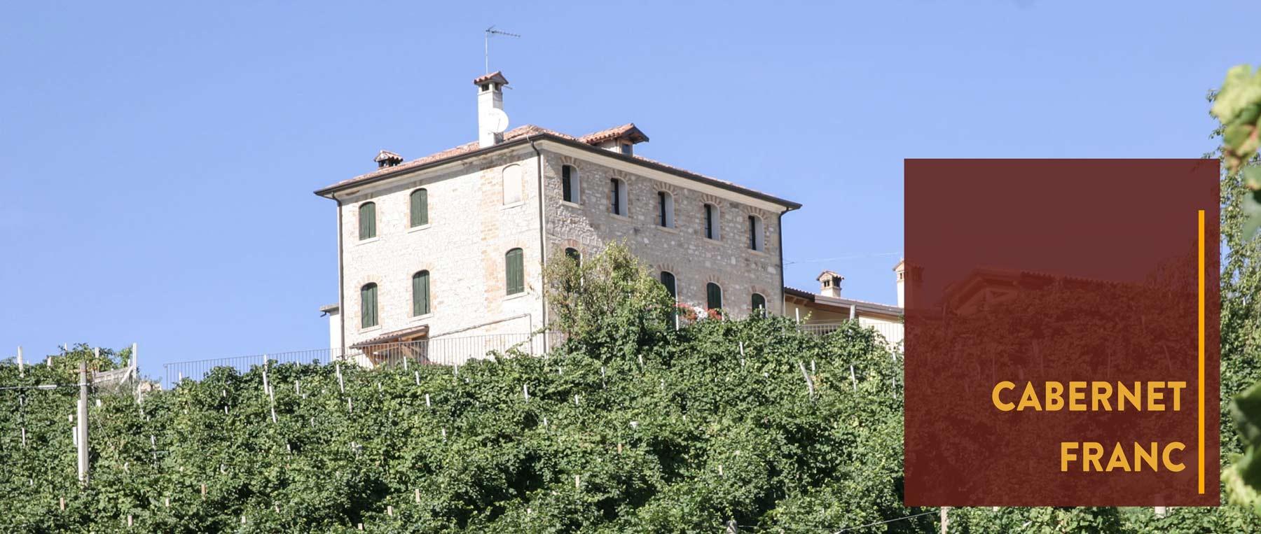 An der Loire und Norditalien werden reinsortige Cabernet Franc Weine erzeugt