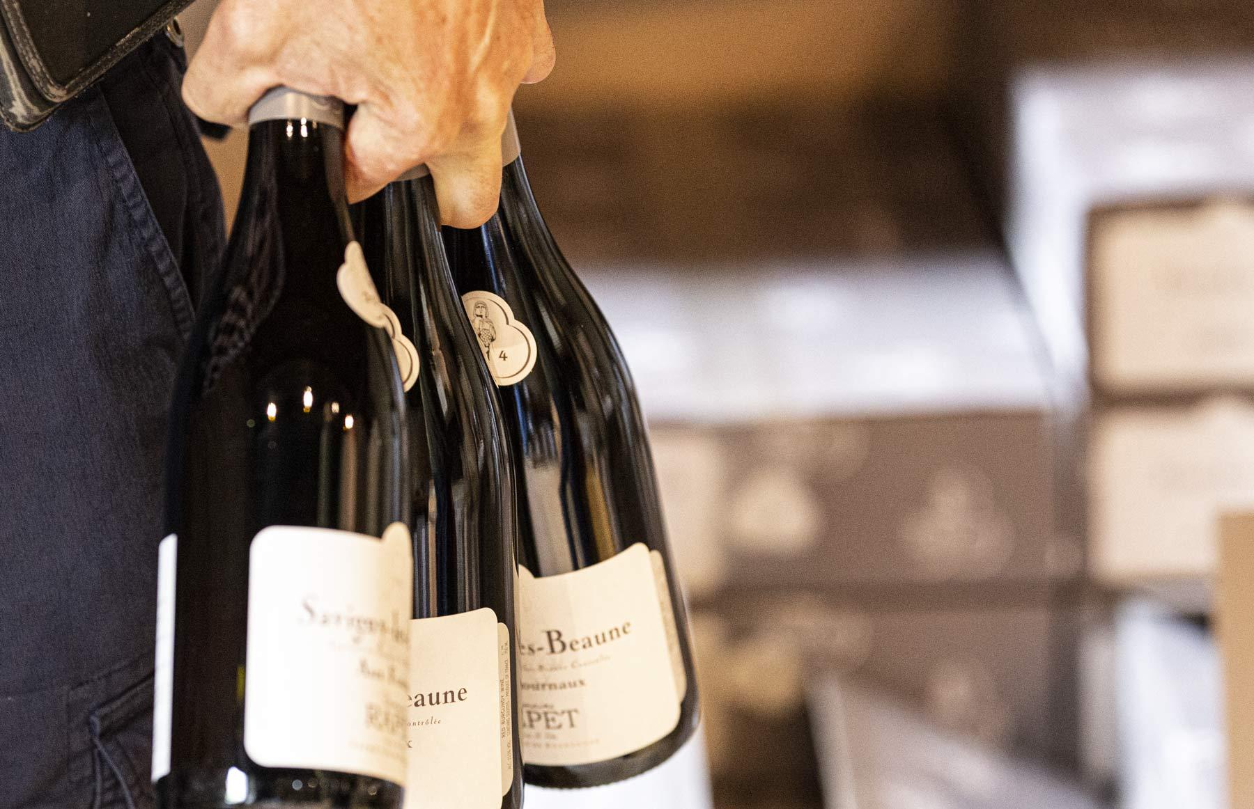 Der Wein ist das Endprodukt einer sehr langen Entstehungsgeschichte