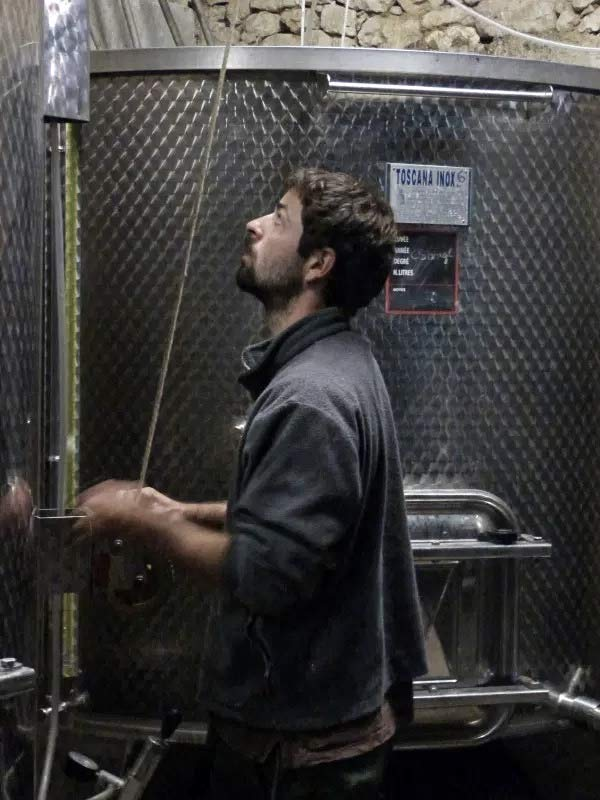 Wein ist auf Riquets das zentrale Produkt