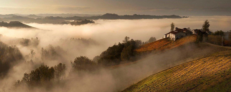 Nebel ist in dem Piemont - der Nebbbiolo wurde nah ihm benannt.
