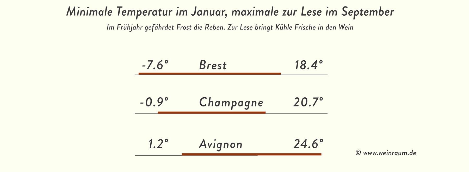 Grenzen des guten Weißweines: Frost im Frühjahr und Kühle zur Zeit der Lese