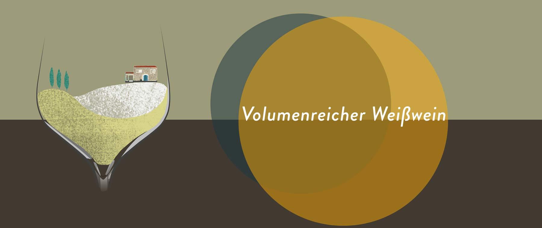 Volumenreiche Weißweine stammen von Rebsorten wie Chardonnay und wurden oft im Holz ausgebaut
